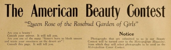 American Beauty Contest headline