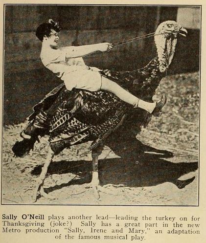 Sally oneill turkey exhib trade rev '25