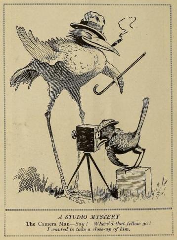FilmFun Apr '1919 cartoon birds